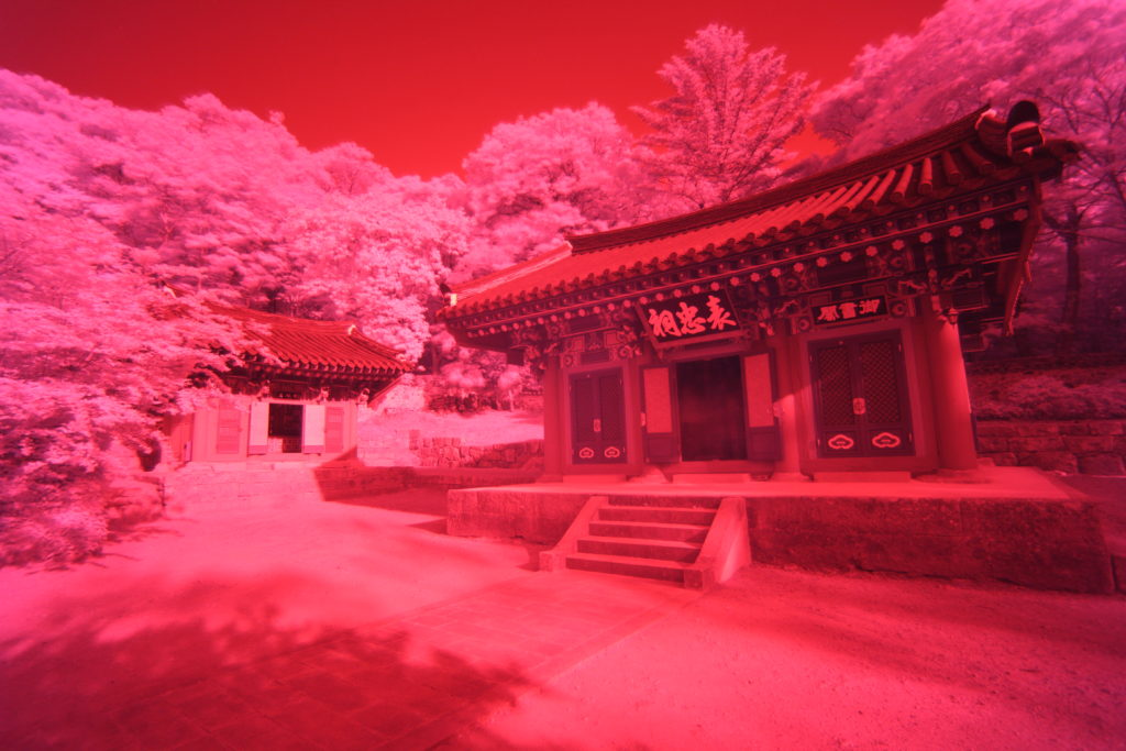 Here you can see an unprocessed infrared photo, most of the image is of a red hue, and post processing will need to be applied.