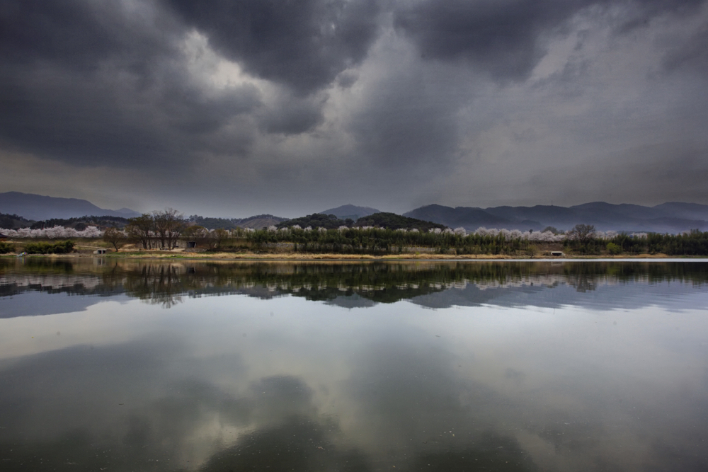 Spring photography gallery