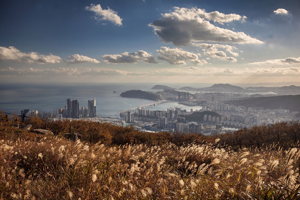 The view of Busan taken from Namsan. This is one of the best creative photos Simon Bond took in 2018.