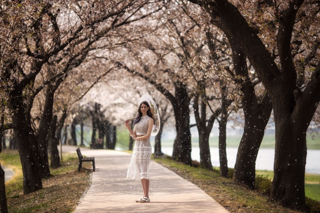 Spring cherry blossom portrait photo. Taken by professional photographer Simon Bond. Based in South Korea.