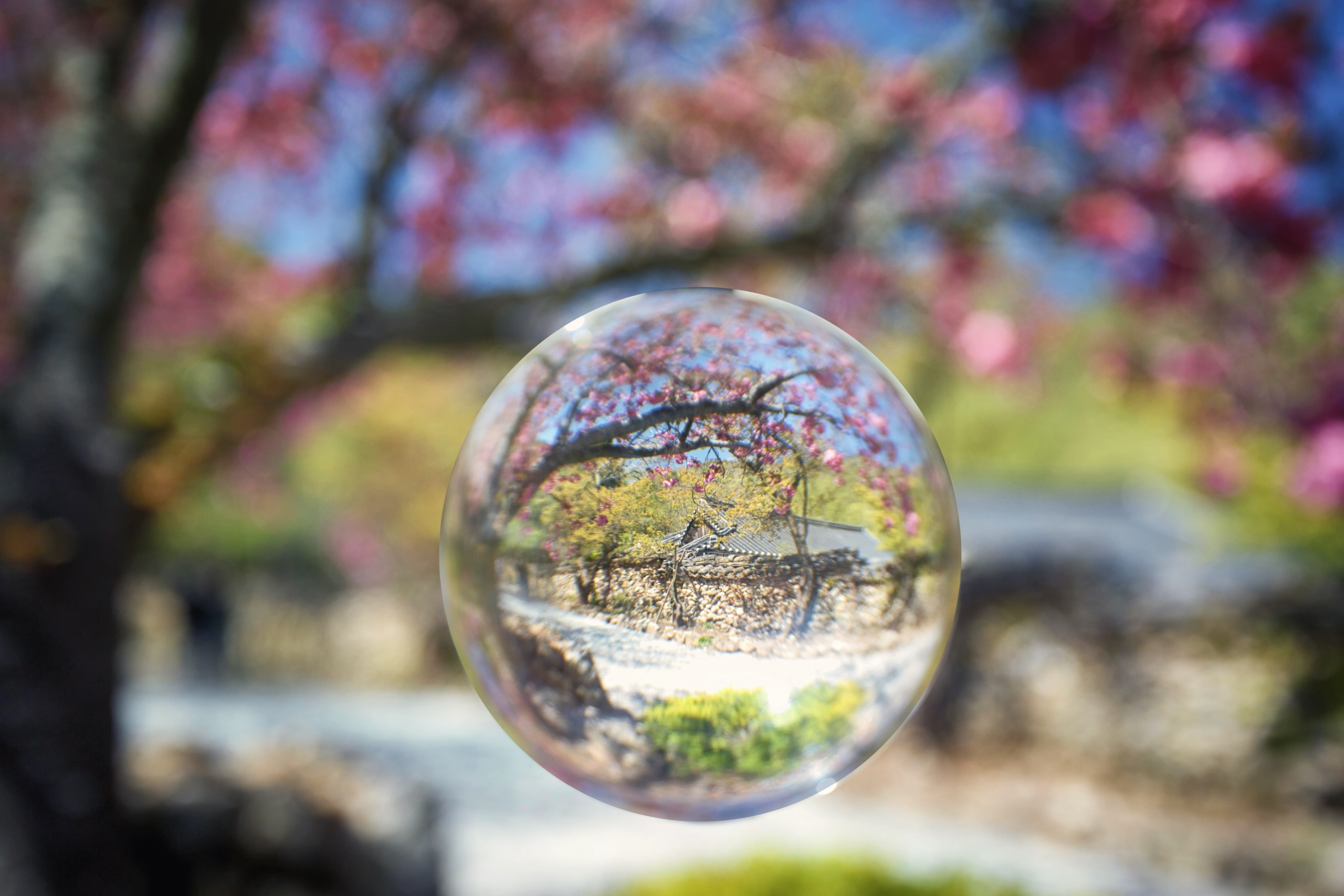 Lensball photography at Seonamsa in South Korea.